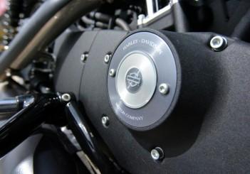 Harley-Davidson Iron 883 - 15