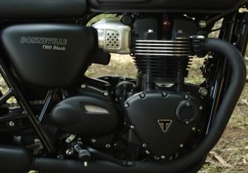 Triumph Bonneville T100 - 13