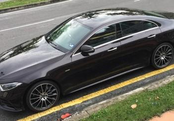 Mercedes-Benz CLS 450 Edition 1  (4)
