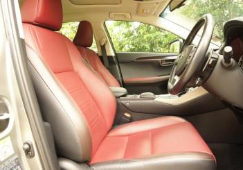 Lexus NX 300 Premium - 19