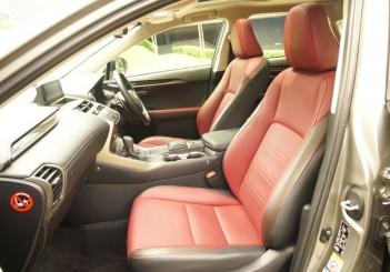 Lexus NX 300 Premium - 21